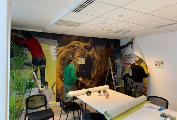 installation-décoration-bureau-Jellysmack